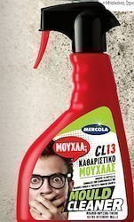 MOULD CLEANER SPRAY 500ml